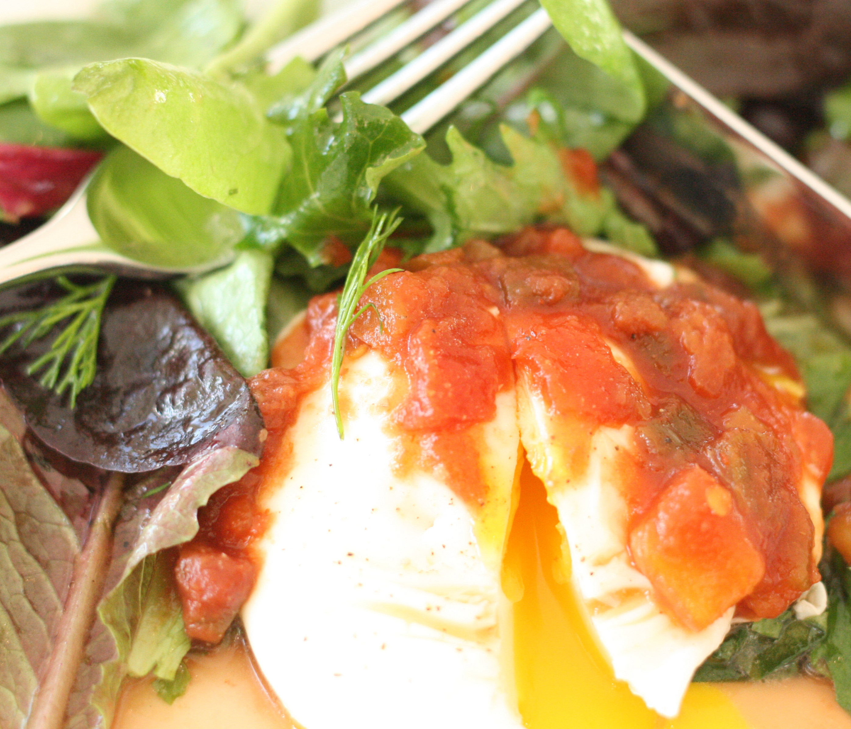Salsa Eggs with Lightly Dressed Herb Salad